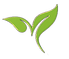 Braley Leaf.tif