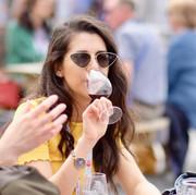 Northville Food & Wine Festival 2019 3.j