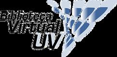 boblioteca-virtual-300x146.png