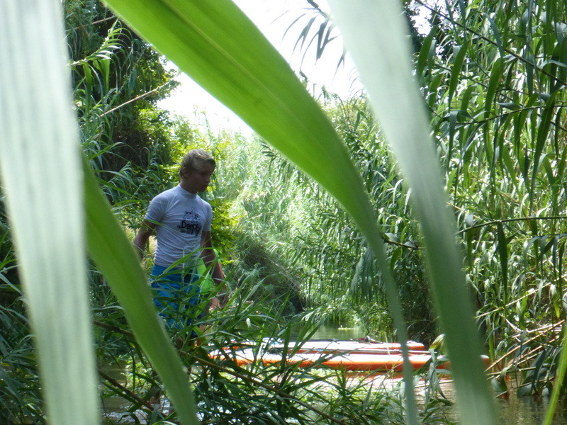Green oasis with SUP in Greece