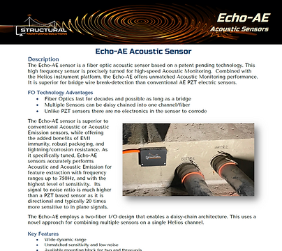 Echo-AE flyer image.png