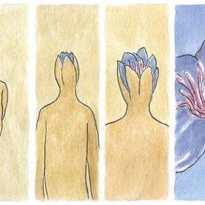 11 sinais (sintomas) de paz interior