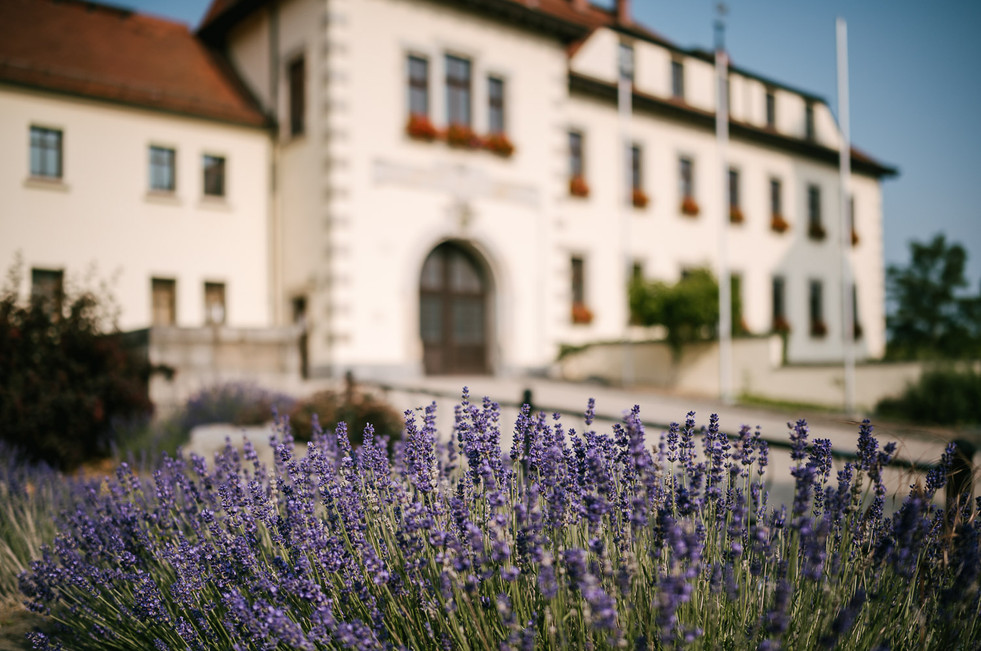Hochzeitsfotograf_Zwenkau-Standesamt2.jpg
