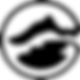 CFI logo transparent.png