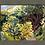 Thumbnail: Summerhouse View 14.11.2020