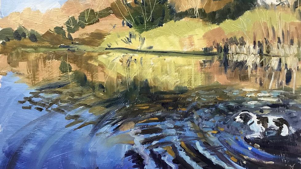 Kenwith Reservoir 9.03.21