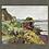 Thumbnail: Gorse flowers, Abbottsham Cliffs. 2.12.2020
