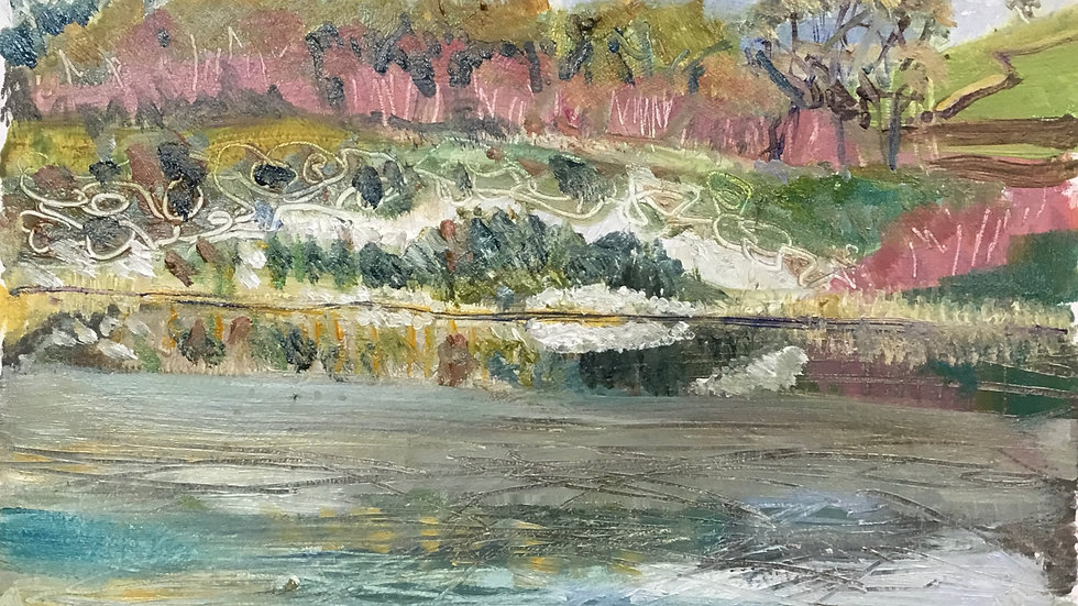 Meeth Quarry Reservoir. 8.12/2020