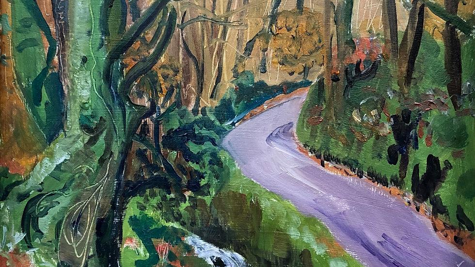 Bucks Mill Woods I