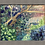 Thumbnail: Corner of the garden 20.11.20
