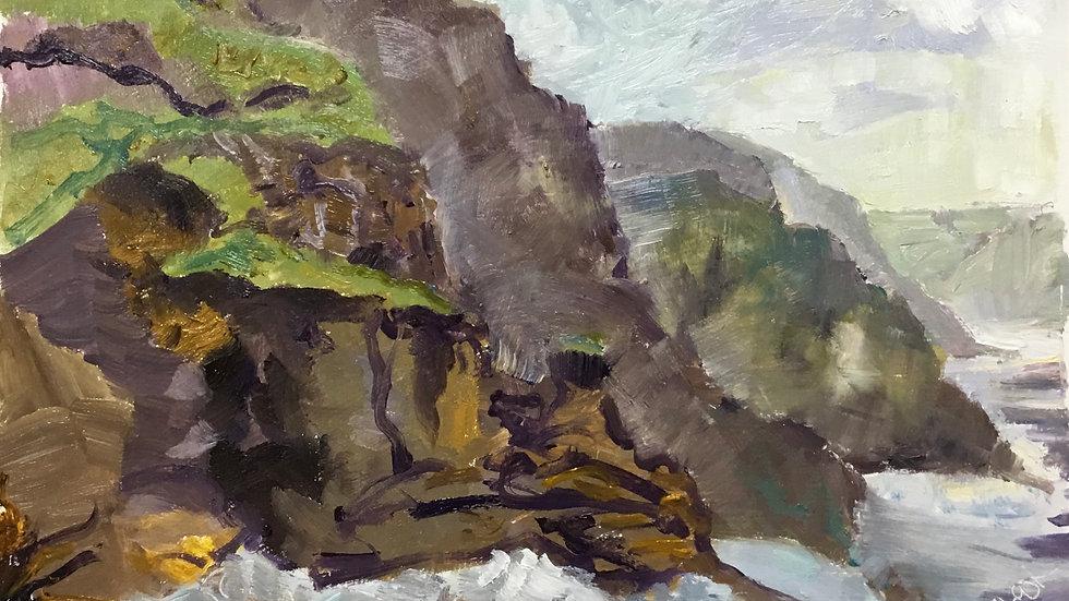 Abbotsham Cliffs. 17.01.21