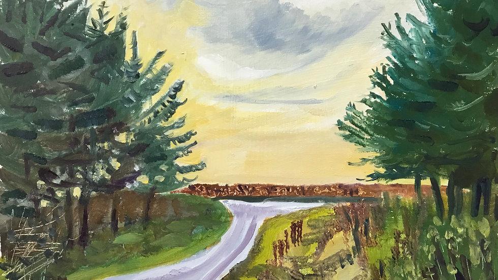 Wellsford Moor Plantation. 28.11.2020