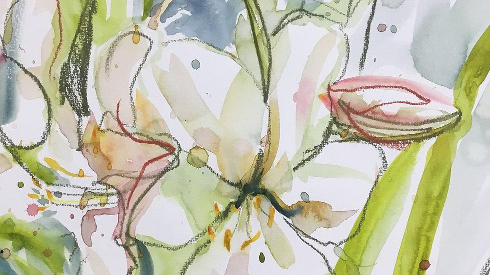 Atigone's Lillies