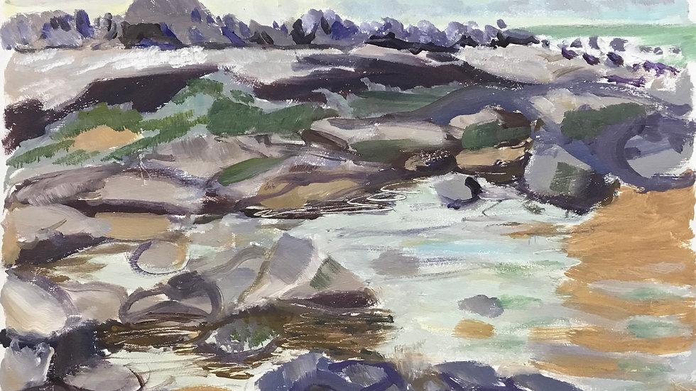 Duckpool Rocks