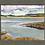 Thumbnail: Instow Barton Marsh 6.01.2021