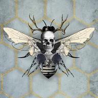 McQueen's bee