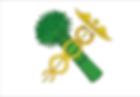 Flag_of_Novozybkov_(Bryansk_oblast).png