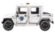 E-Ride EXV4 LSV NEV Electric Utility Vehicle