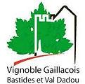 SMIX Gaillacois.jpg