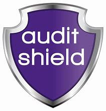 audit shield.jpg