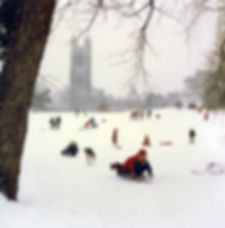 Sledders on Princeton University campus