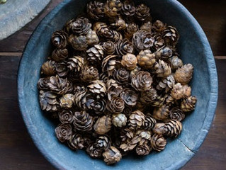 Black Pepper and the Endocannabinoid System (ECS)