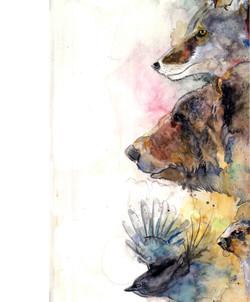 「Whistler Wild Life」