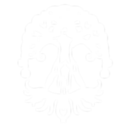 Maine-Roots-Logo_white.png