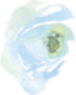 Layer_202Image_4x.png