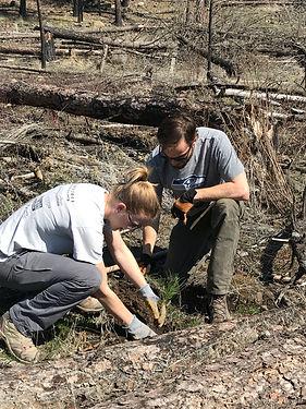 TreePlanting_SpokaneUrbanForestry_KatieK