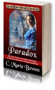 3Dc 2019 Paradox 3D book with reflection