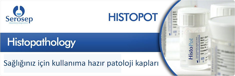 Histopot
