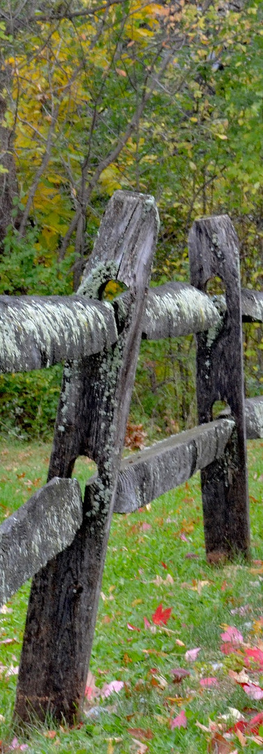 Fences 3