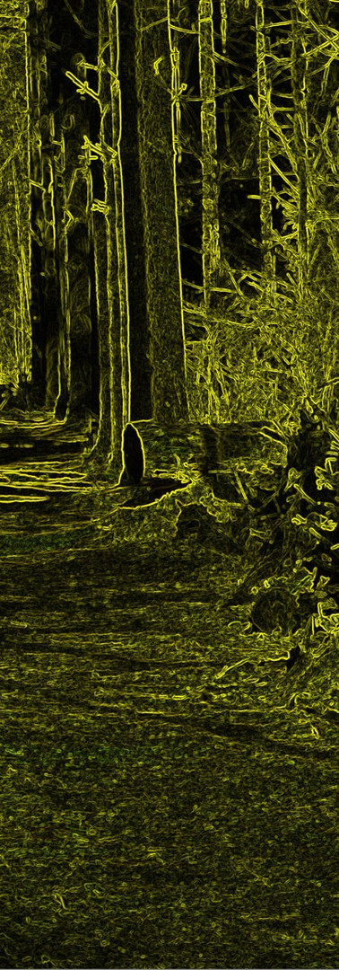 Neonpfad (Neon Path)