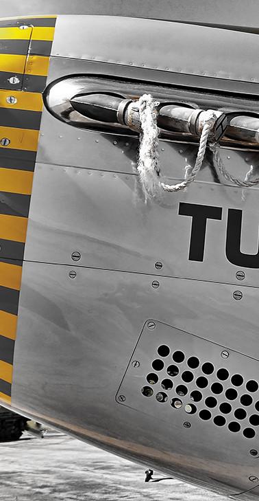 Tuskegee Yellow