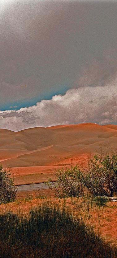 Rippled Dunes