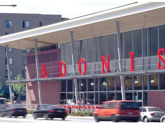 Adonis | Sauvé