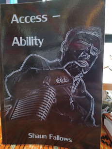 Review of Shaun Fallow's 'Access-Ability'