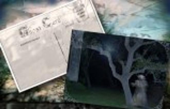 GhostCard_Gallery_tree