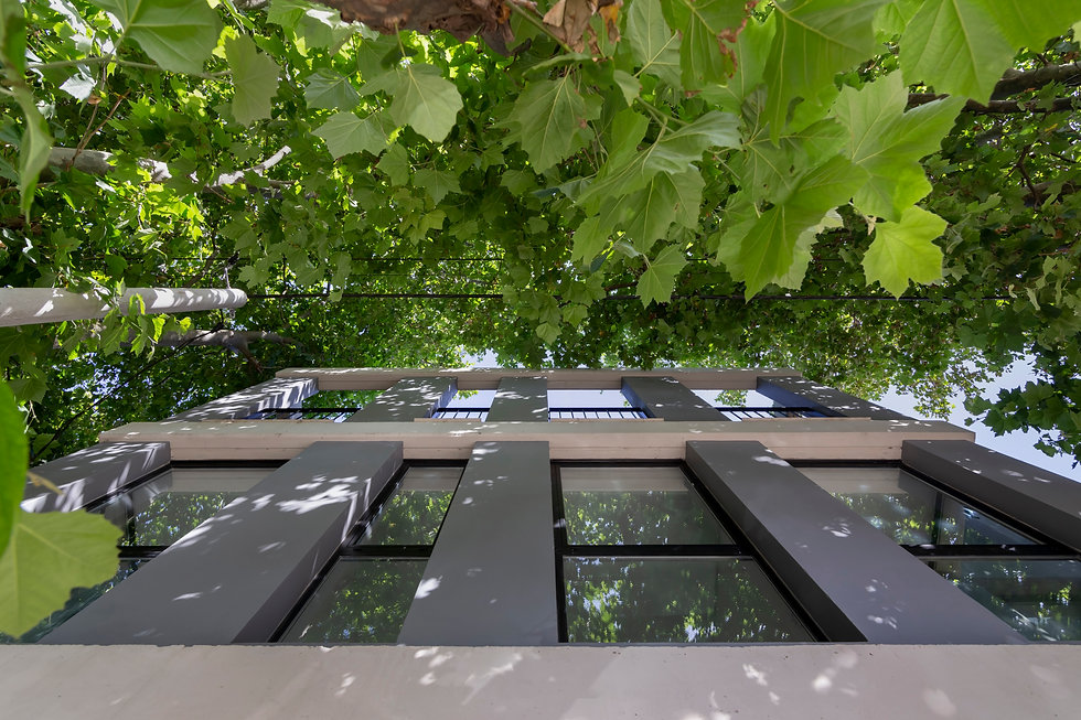 Edificio 20 de Febrero - PAPEL © Ramiro