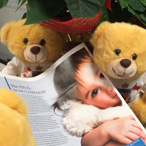 bear 2.jpg