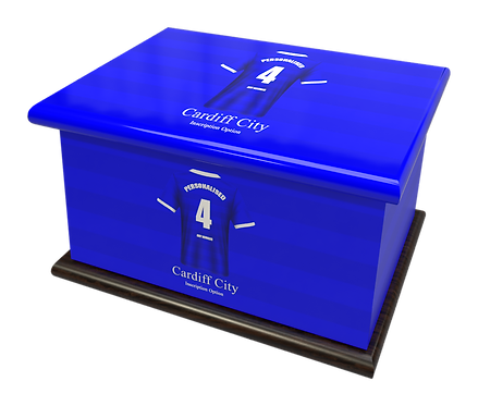 Custom Personalised Cremation Ashes Casket Urn FOOTBALL TEAM CARDIFF CITY