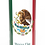 Personalised Custom Bespoke Ashes Scattering Tube Urn for Cremated Remains in Flag MEXICO MEXICAN design