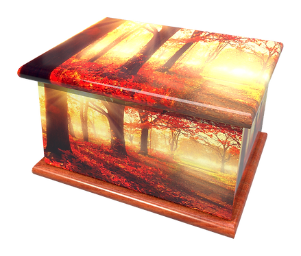 Personalised Custom Cremation Ashes Caskets and Keep-Sake Urns in a WOODLAND AUTUM FORESTLandscape design