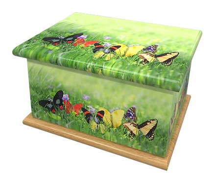 Custom Personalised Cremation Ashes Casket Urn BUTTERFLIES