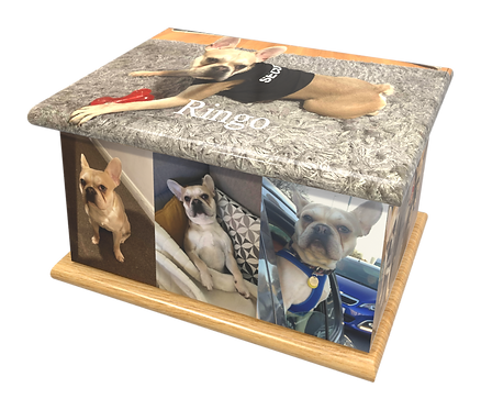 Custom Personalised Pet Animal Cat Dot Cremation Ashes Casket Urn Photographic