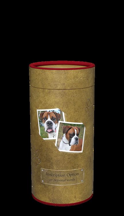 Custom Personalised Cremation Pet Ashes Casket Urn Scatter Tube Animal Cat Dog