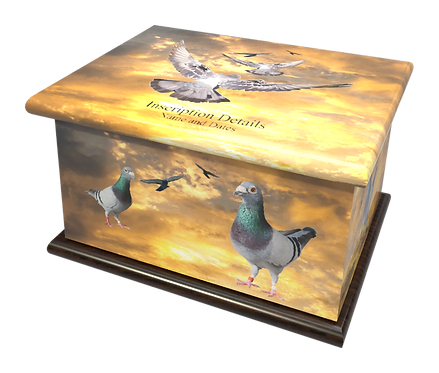 Personalised Custon Cremation Ashes Casket and Keep-Sake in PIGEON BIRDSdesign