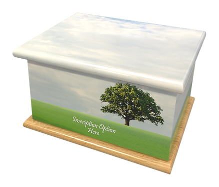 Personalised Custom Cremation Ashes Caskets and Keep-Sake Urns in a Acenic Landscape design