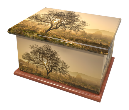 Custom Personalised Cremation Ashes Casket Urn MEADOW FIELD SCENIC WOODS